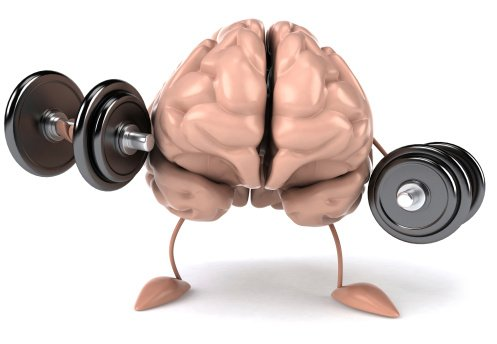 Exercise improves your memory!
